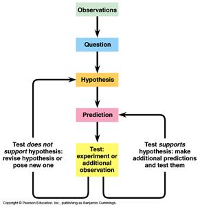 image002 the scientific method